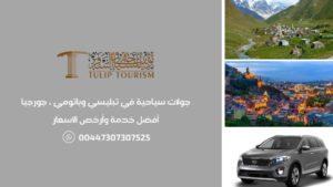 مرشد سياحي وسيارة مع سائق في تبليسي